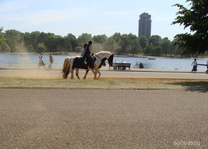 hyde-park-london-2009-suitcasey