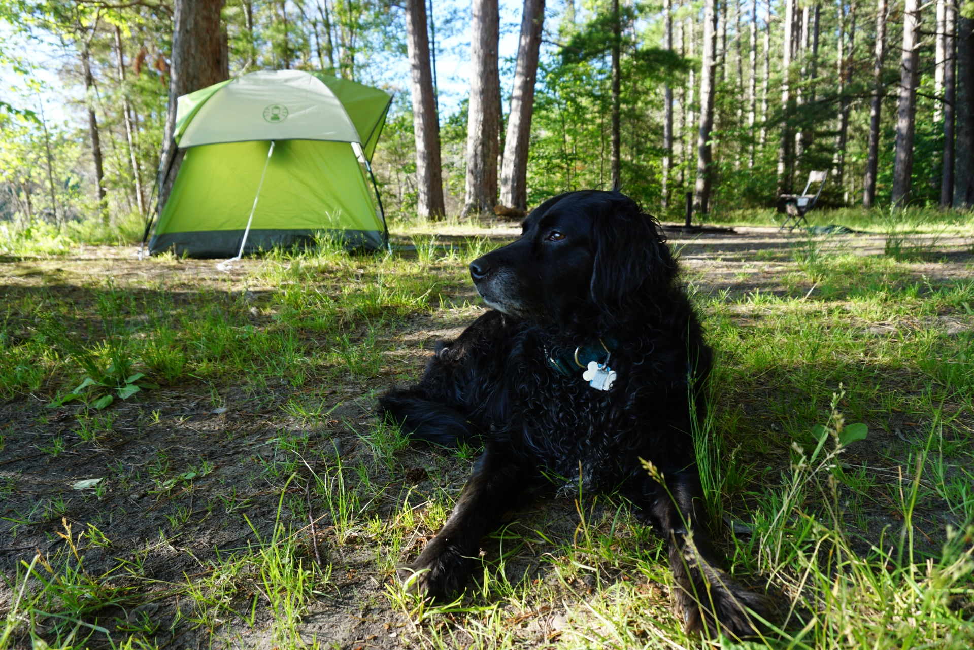 Suitcasey Audi UP Camping